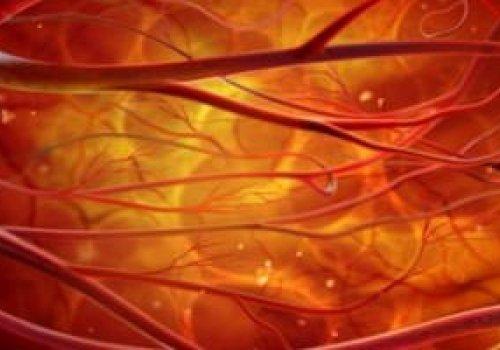Последствия нарушения кровообращения организма